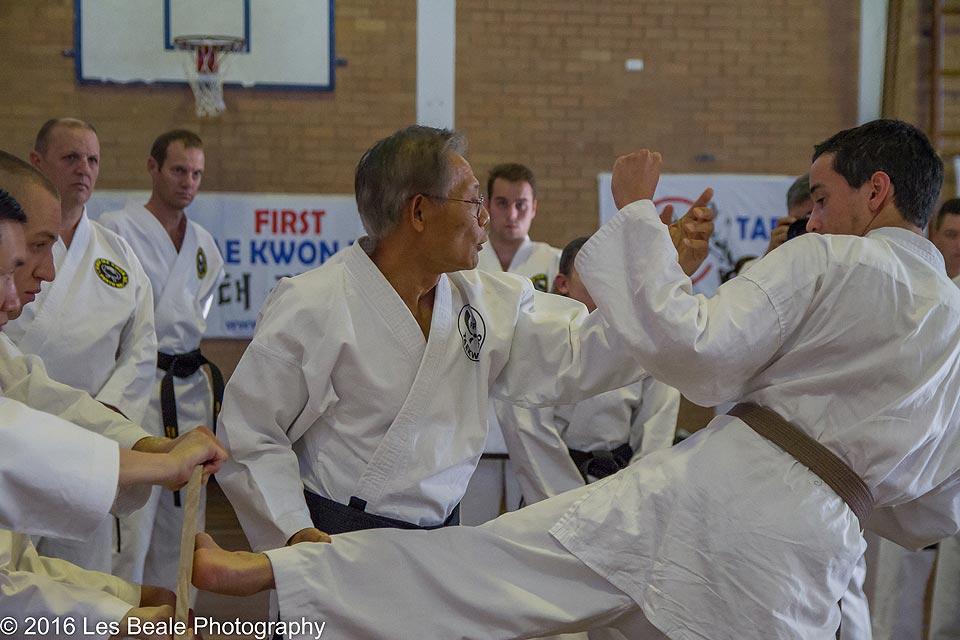 adults Taekwondo perth