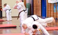 First-Taekwondo-Perth-WA-94.jpg